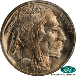 1928-D Buffalo Nickel PCGS and CAC MS 66 Dark Graphite Grey Color