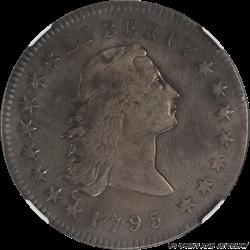 1795 Flowing Hair Dollar  2 Leaves NGC Fine Details BB-21, B-1